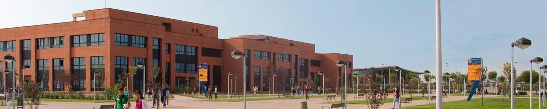 En La Universidad Alfonso — Sceneups